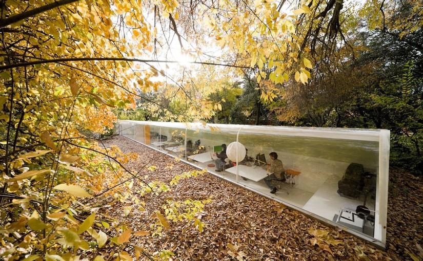 Ondergronds kantoor in het bos