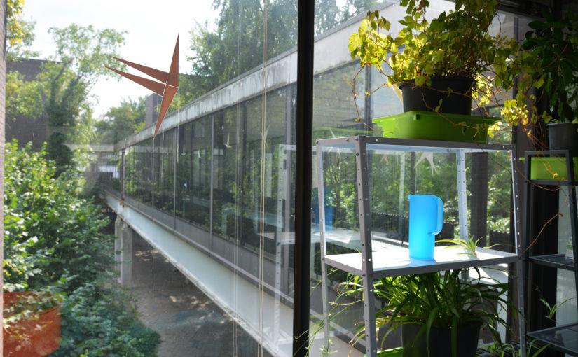 De Biotoop: broedplaats, kraakpand  of commune?